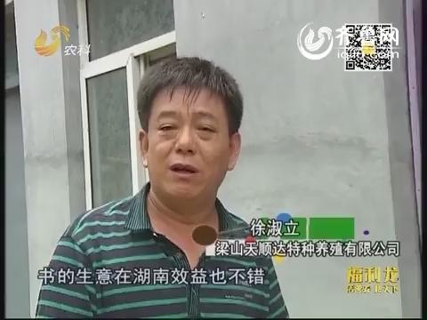 金领农民:敢闯的徐老五