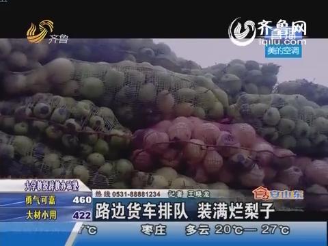 滨州:路边货车排队 装满烂梨子