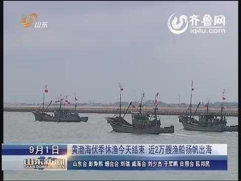 黄渤海休渔9月1日结束 近2万艘渔船扬帆出海