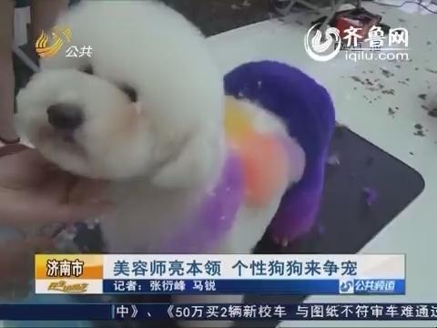 济南:美容师亮本领 个性狗狗来争宠
