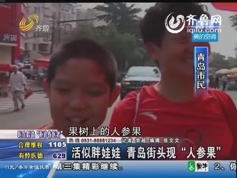 """青岛街头惊现35元""""人参果""""活似胖娃娃引围观 市民称不敢吃"""