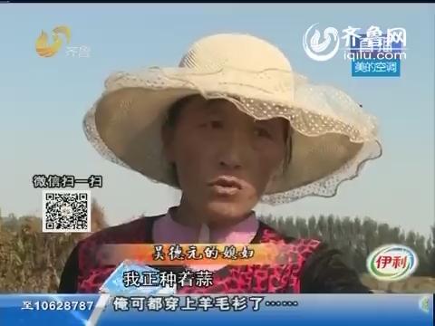 泰安:一块地闹纠纷 两家村民抢着种地