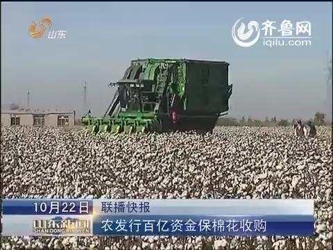 农发行百亿资金保山东棉花收购