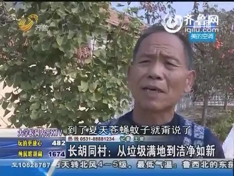 长胡同村:从垃圾满地到洁净如新