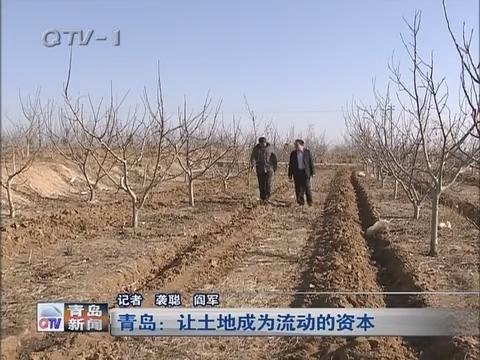 青岛:让土地成为流动的资本