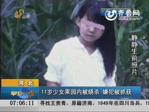 河北:11岁少女果园内被烧杀 嫌犯被抓获