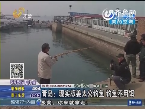 青岛:现实版姜太公钓鱼 钓鱼不用饵