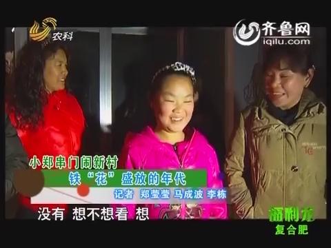 """小郑串门闹新村:铁""""花""""盛放的年代"""