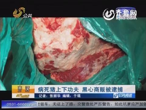 齐河:病死猪上下功夫 黑心商贩被逮捕