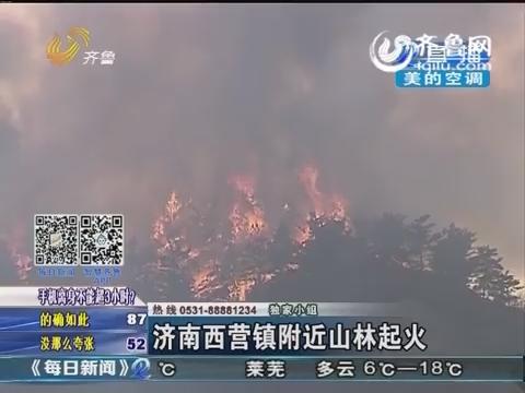 济南西营镇附近山林起火