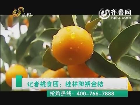 中国原产递之记者挑食团:桂林阳朔金桔