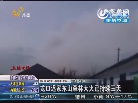 烟台龙口迟家东山森林大火已持续三天