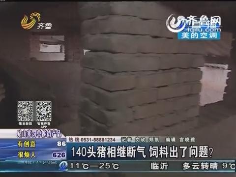 菏泽:140头猪相继断气 饲料出了问题?