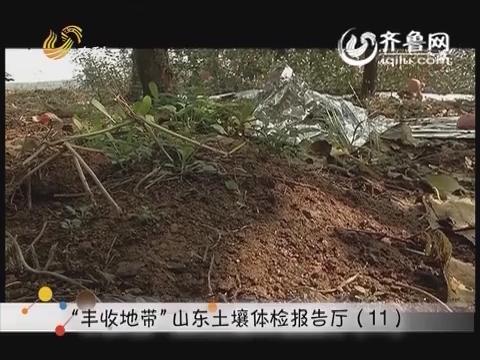 """""""丰收地带""""山东土壤体检报告厅(11)"""