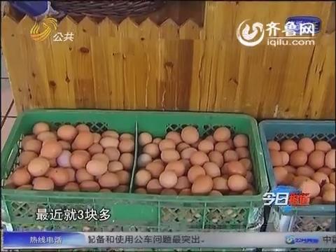全国鸡蛋价格一路下滑