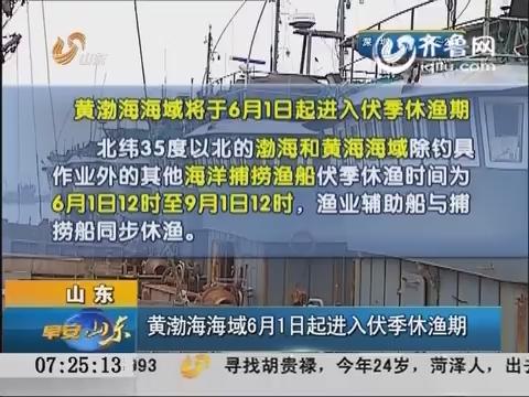 山东:黄渤海海域6月1日起进入伏季休渔期