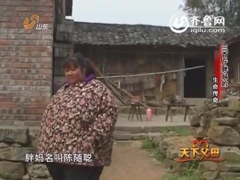 2015年05月24日《天下父母》:生命传奇 三百斤的胖妈妈