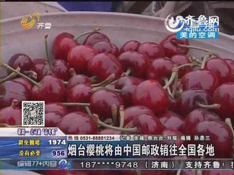 烟台樱桃将由中国邮政销往全国各地
