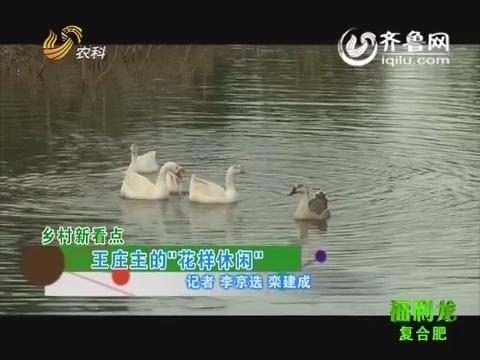 """乡村新看点:王庄主的""""花样休闲"""""""