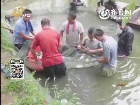 最山东:野鱼汤