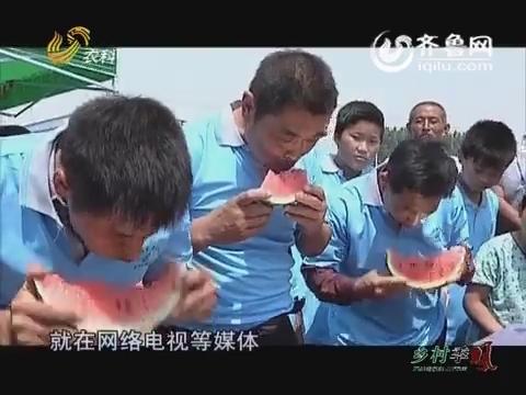 帮农季:这里的西瓜比蜜甜