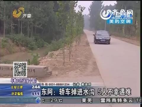 东阿:轿车掉进水沟 5人不幸遇难