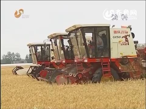 """山东:调整完善农业""""三项补贴"""" 加快推动农业发展转方式"""