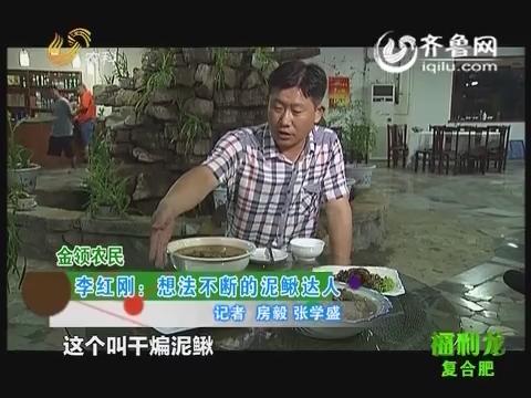 金领农民:李红刚:想法不断的泥鳅达人