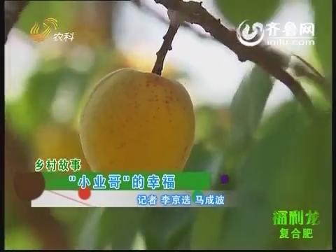 """乡村故事:""""小业哥""""的幸福"""