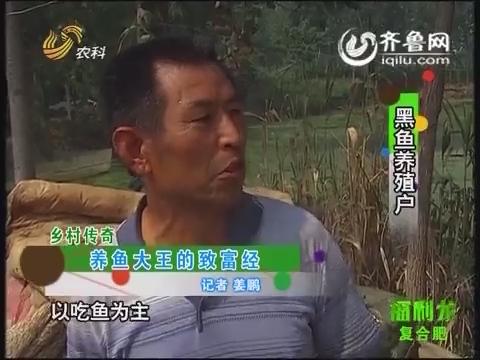 乡村传奇:养鱼大王的致富经