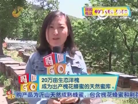 2015年07月28日《妈咪GO》:沂山天然成熟蜂蜜