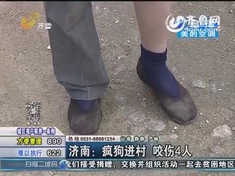 济南:疯狗进村咬伤4人