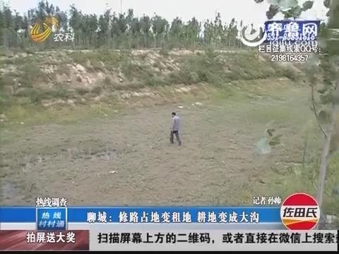 聊城:修路占地变租地 耕地变成大沟