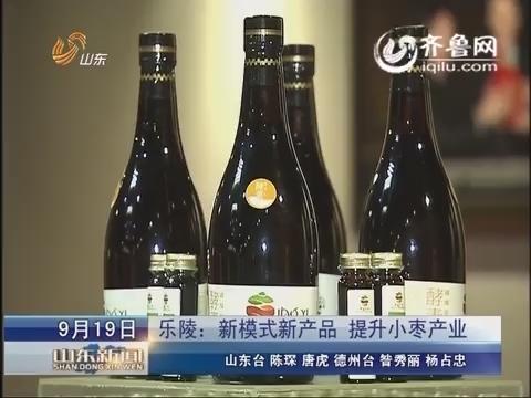乐陵:新模式新产品  提升小枣产业