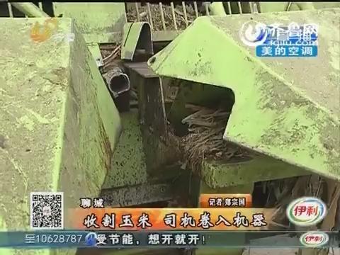 聊城:收割玉米 司机卷入机器
