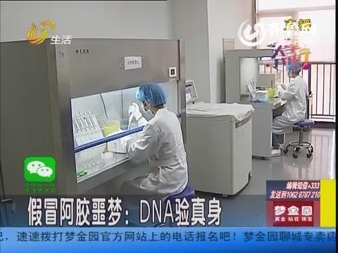 假冒阿胶噩梦:DNA分子鉴定验真身