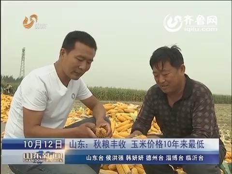 山东:秋粮丰收 玉米价格10年来最低