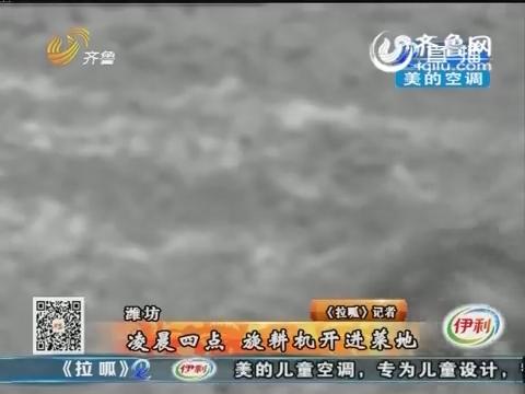潍坊:凌晨四点 旋耕机开进菜地