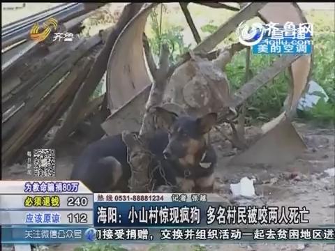 海阳:小山村惊现疯狗 多名村民被咬两人死亡