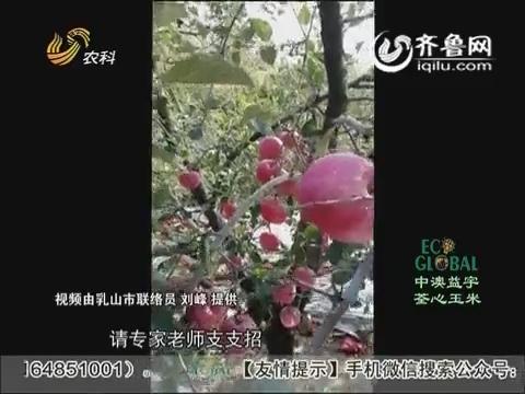20151026《农科直播间》:植保专家 张振芳