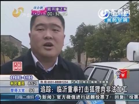 追踪:临沂重拳打击狐狸肉非法加工