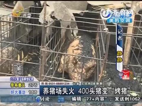 """商河:养猪场失火 400头猪变""""烤猪"""""""