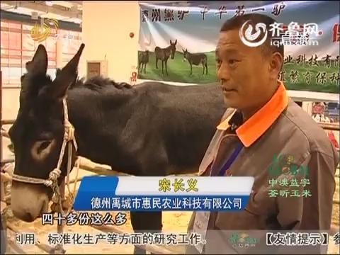 20151111《农科直播间》:聚焦畜牧业博览会