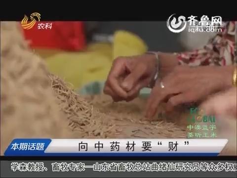 """20151113《农科直播间》:向中药材要""""财"""""""
