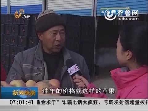 """关注山东农产品:烟台苹果""""很受伤"""" 量价齐跌各降三成"""
