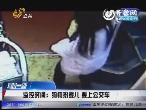 河南郑州:狗狗扮婴儿要上公交车