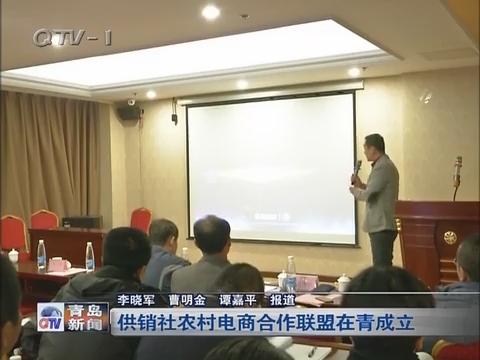 供销社农村电商合作联盟在青岛成立