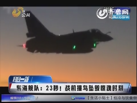 东海舰队:23秒!战机撞鸟坠毁惊魂时刻