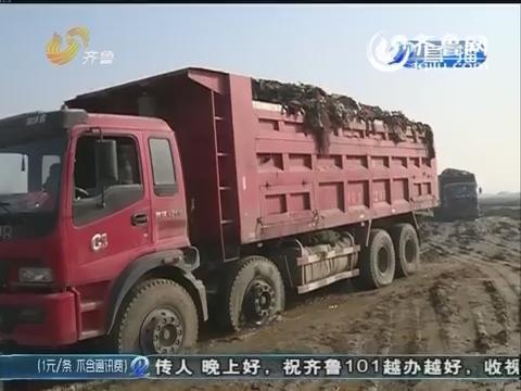枣庄:惊!村里莫名成了垃圾填埋场